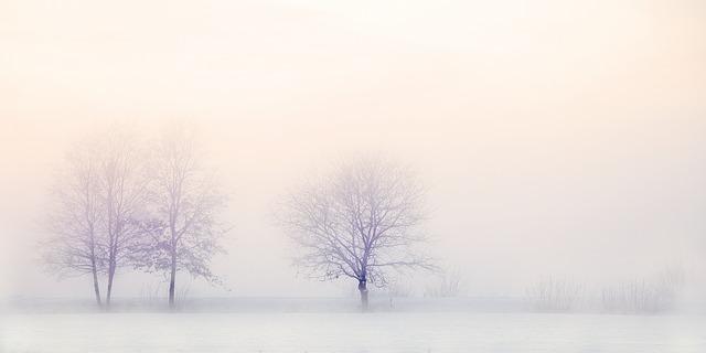 winter-landscape-2571788